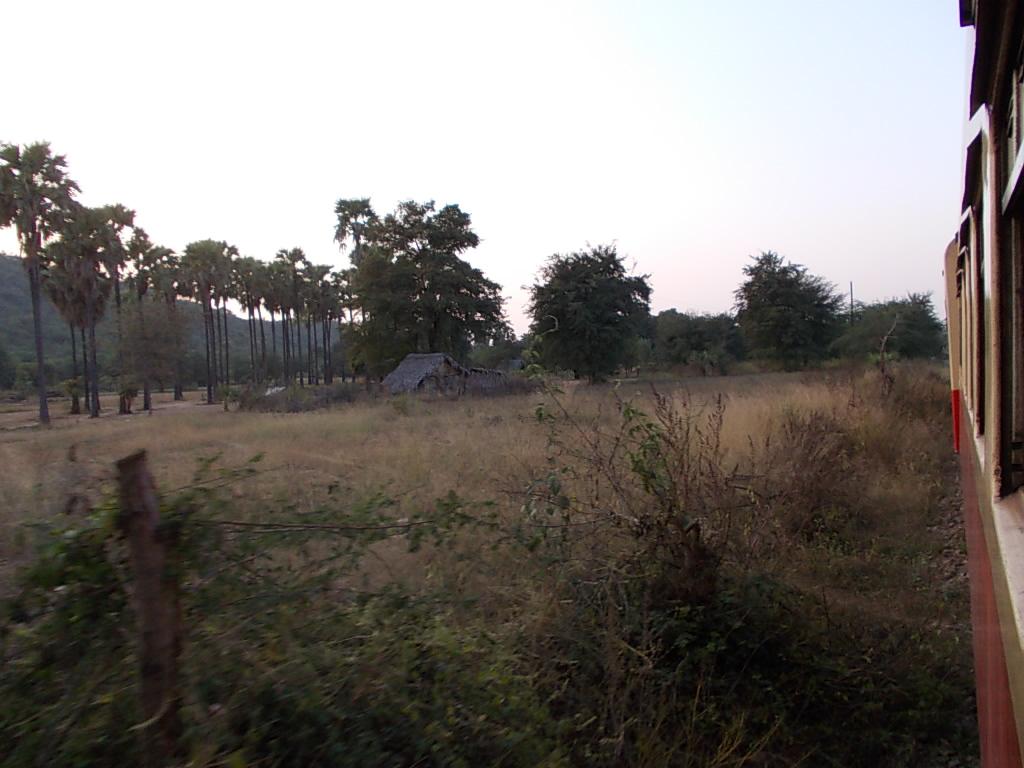 列車から見るバガンの風景