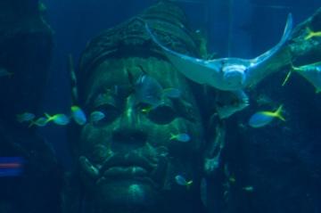 これぞ、タイの水族館